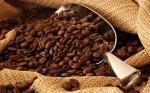 Kahve Hakkında Hiç Bilinmeyen 8 Şey