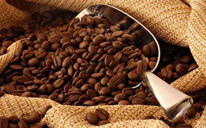 kahve-tohumlari
