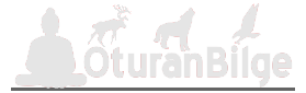 OturanBilge - Güncel, Tarih, Teknoloji, Kültürel, Gezi Yazıları